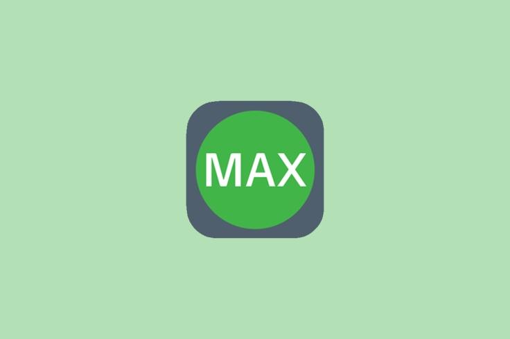 Workflow Max; Logo