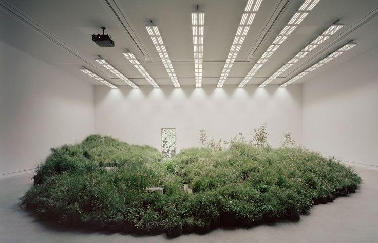 Venice Biennale; Venice; Mauro Baracco; Louise Wright; Linda Tegg